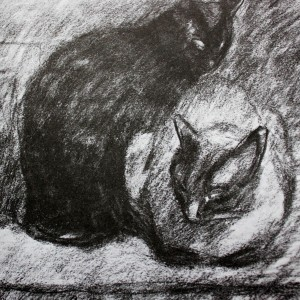 Black and Siamese Cats, Theophile Steinlen
