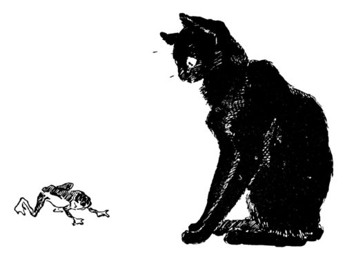 Black cat and frog, Theophile Steinlen