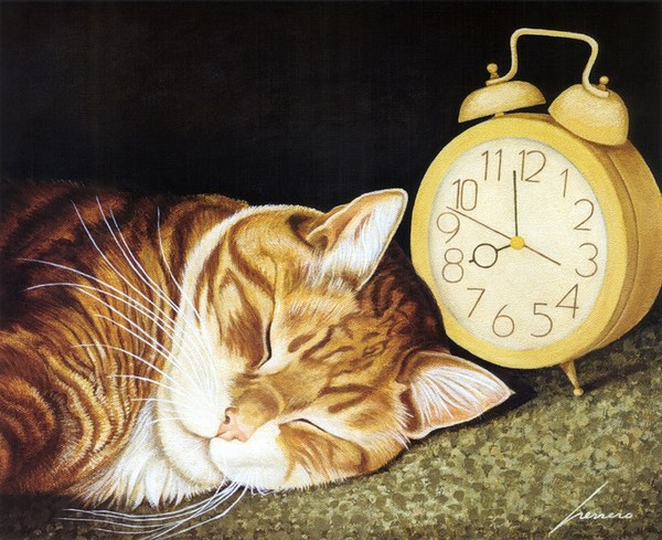 Lowell Herrero, Nap Time