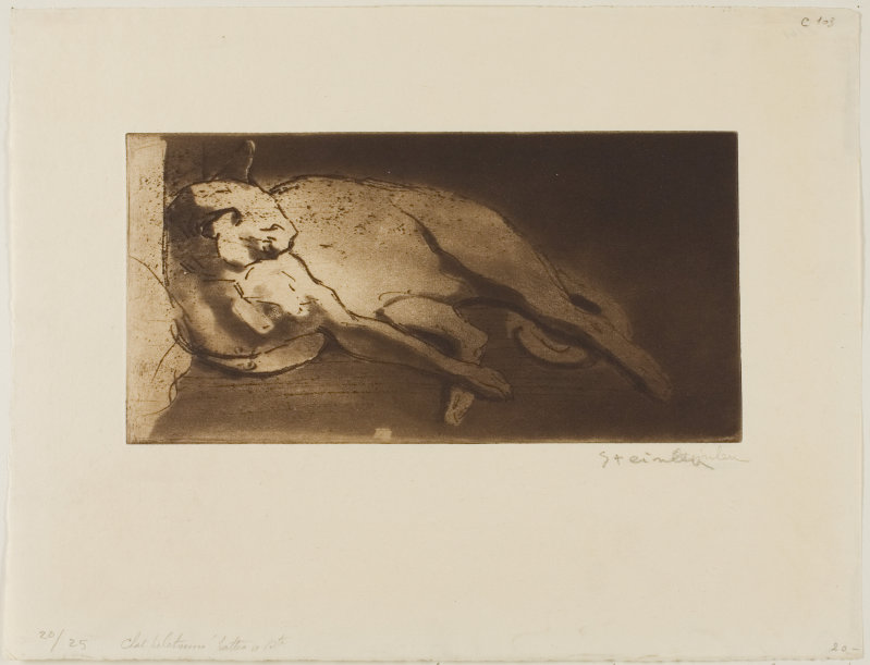 Reclining Cat Stretched Out from Left to Right, February 1903 Theophile Steinlen