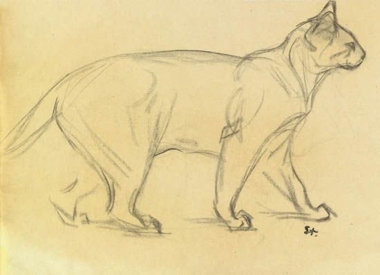 Théophile-Alexandre Steinlen (1859-1923) - Study of a cat walking