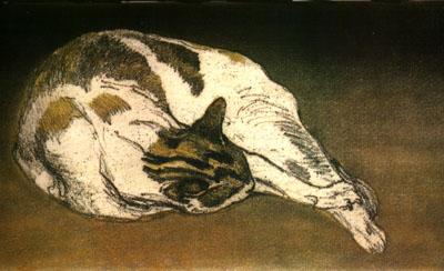 Theophile Steinlen, Sleeping cat