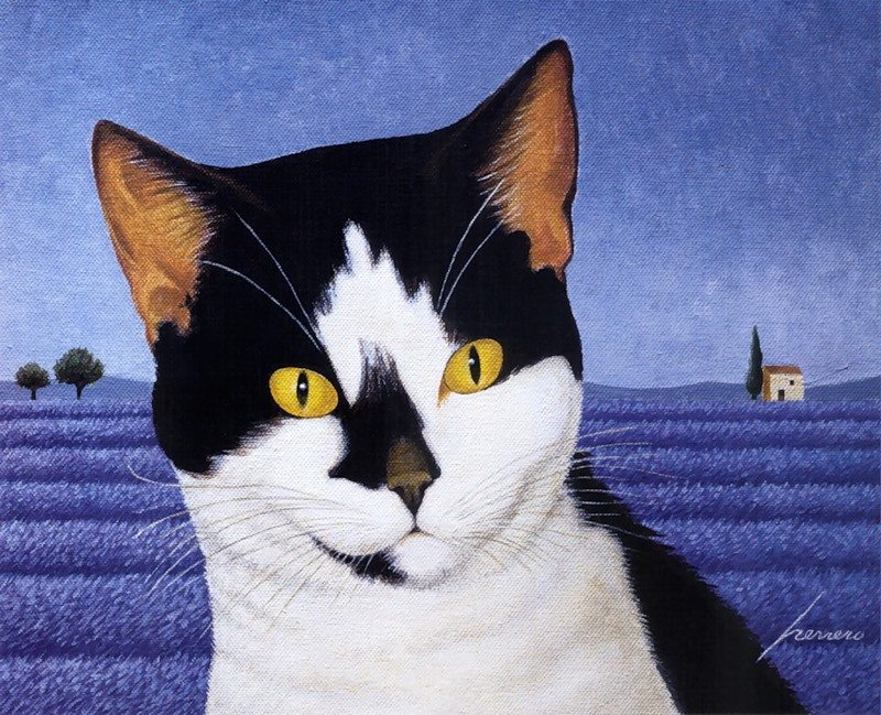 Tuxedo Cat on Blue, Lowell Herrero