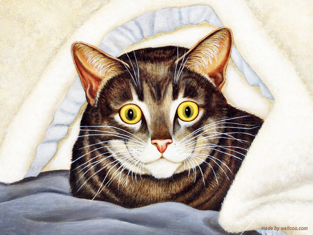 Cat Under the Blanket, Lowell Herrero
