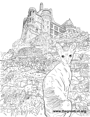Cornish Rex from Cat Breeds Coloring Book One by L.A. Vocelle