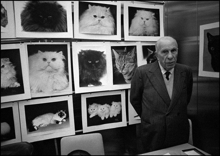 1981, Man with Cats, Ferdinando Scianna