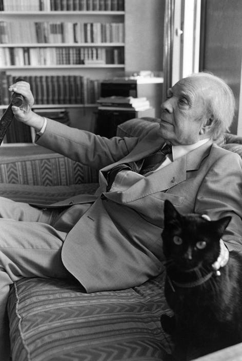 Jorge Luis Borges y gato, foto de Ferdinando Scianna