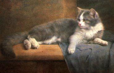 Grey and White Cat, Wilhelm Schwar