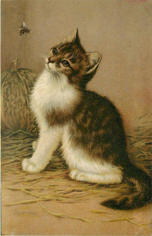 Kitten and Bee, Wilhelm Schwar