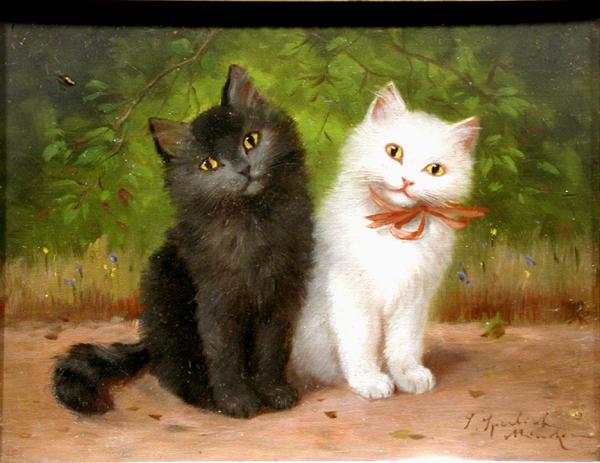 Sophie Sperlich, Black and White Kittens