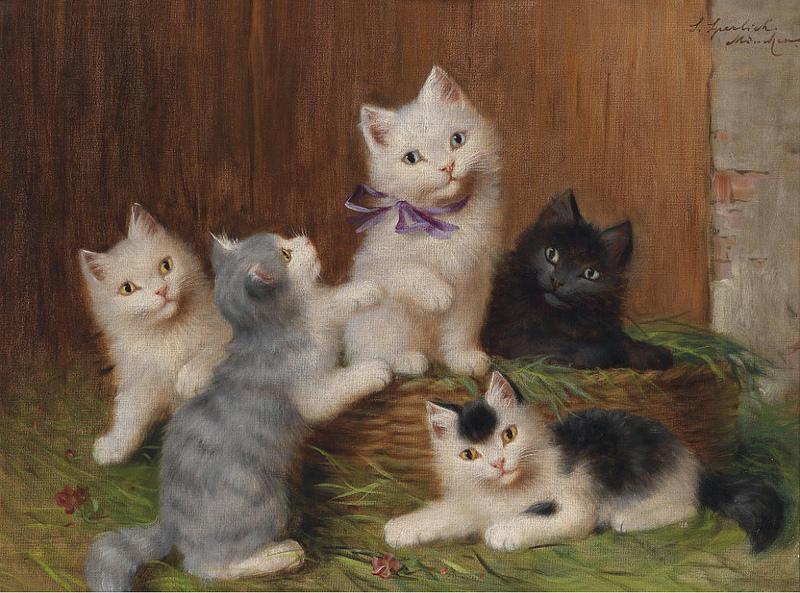 Sophie Sperlich Katzenkinder, chaton, kittens
