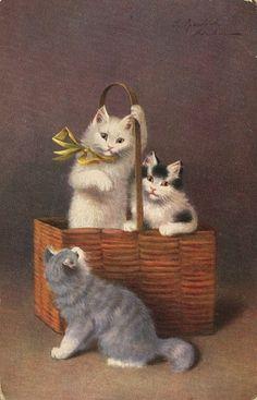 Sophie Sperlich, Kittens in a Basket