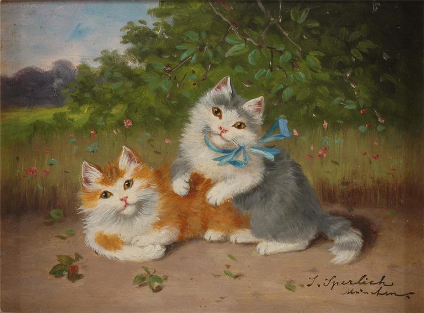 Sophie Sperlich, Orange and Grey Cats