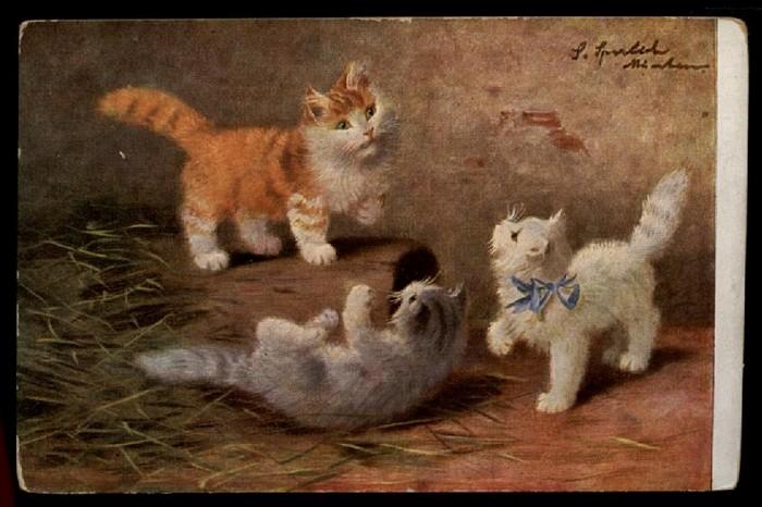 Sophie Sperlich, Three Kittens, Postcard