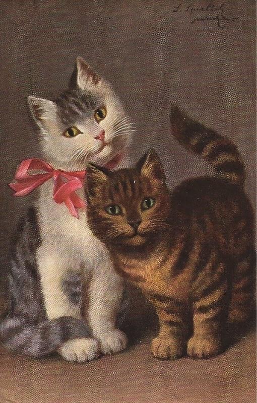 Sophie Sperlich, Two Cats