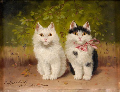 Sophie_Sperlich_Zwei_Kätzchen