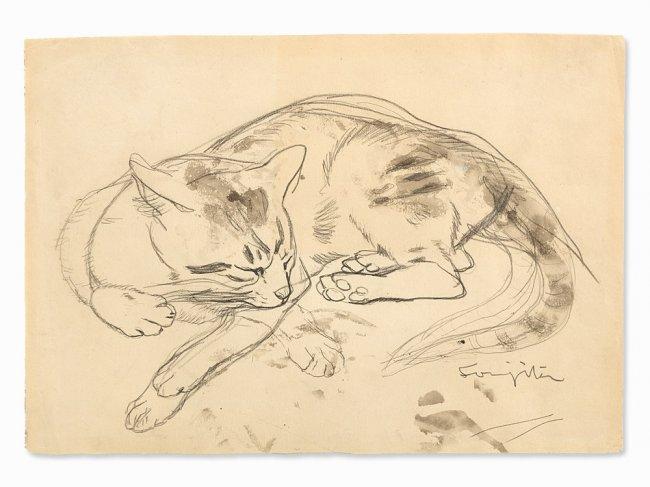 Tsugouharu Foujita, Cat Sketch