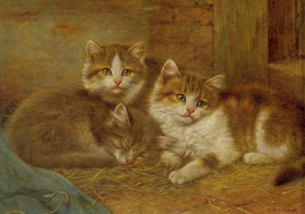 Wilhelm Schwar, Three Kittens