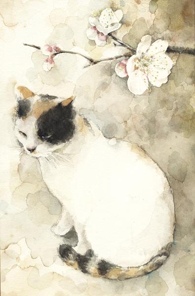 Midori Yamada12- Haru