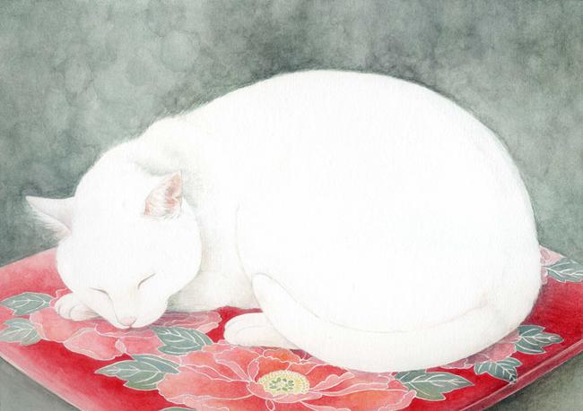 Midori Yamada18-White cat on red mat