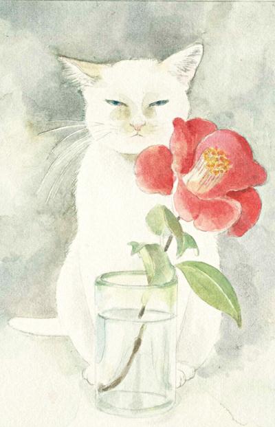 Midori Yamada25-White cat and red flower