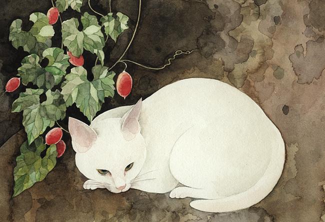 Midori Yamada28-White Cat
