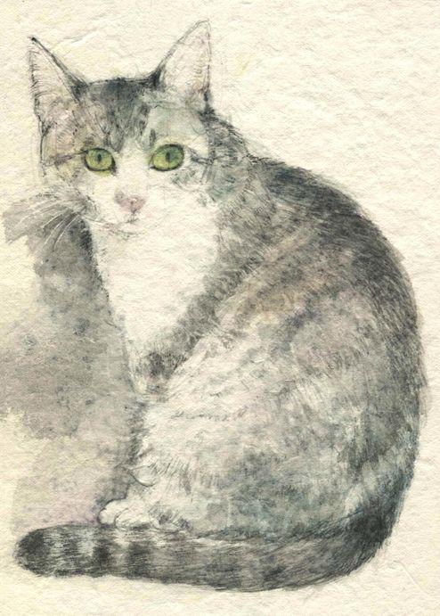 Midori Yamada42-Grey cat