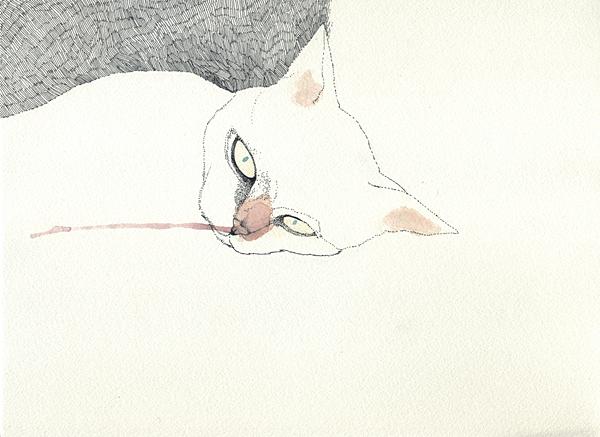 Midori Yamada8, White cat