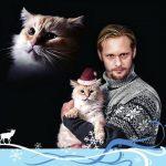 Alexander Skarsgard and cat, famous cat lovers