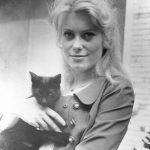 Catherine Deneuve and cat, famous cat lovers