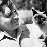 Clark Gable and cat, famous cat lovers