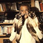 George Brassens and siamese cats