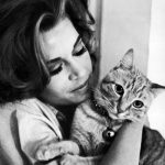 Jane Fonda and cat, famous cat lovers