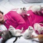 Jessie Eisenberg and cats
