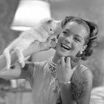 Romy Schneider and cat