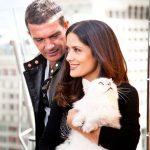 Selma Hayak and Antonio Banderas and cat