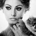 Sophia Loren and cat