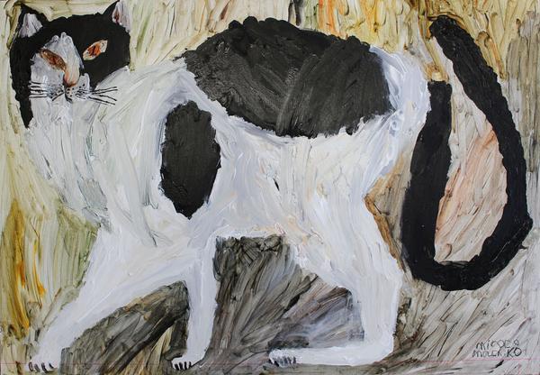 Miroco Machiko, Brown and white cat