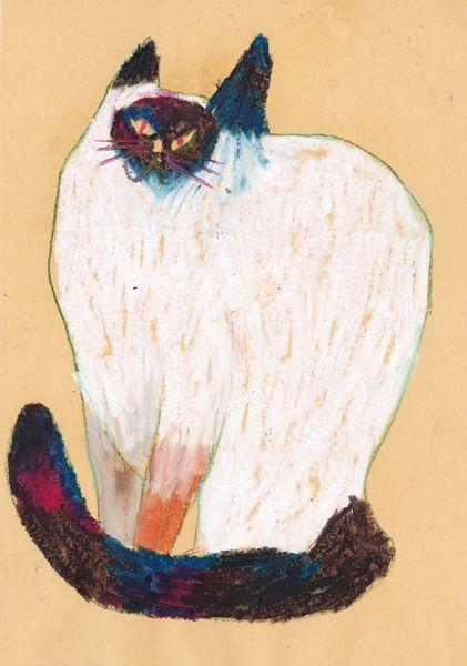 Miroco Machiko, Siamese Cat