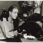 John Patrick and cats
