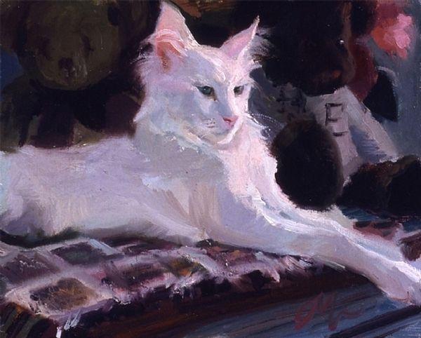 White Cat, CM Cooper