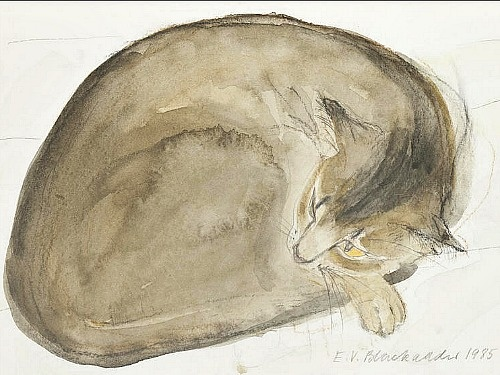 Abyssinian Cat Asleep, 1985 Elizabeth Blackadder