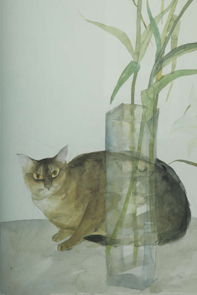 Cat and Lilies, Elizabeth Blackadder