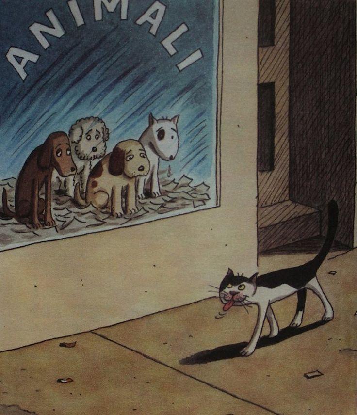 Franco Matticchio, Cat Cartoons