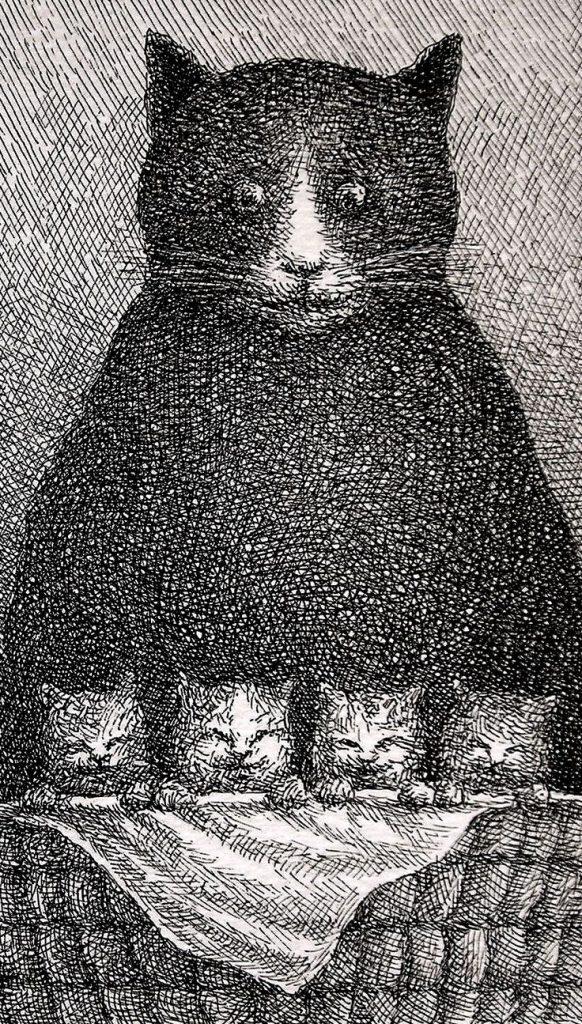 17-Franco Matticchio, Cat Cartoons