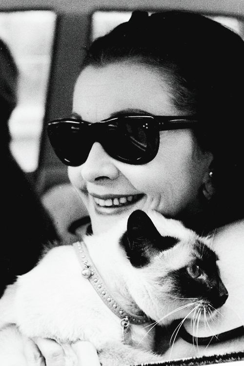Vivian Leigh with a Siamese cat