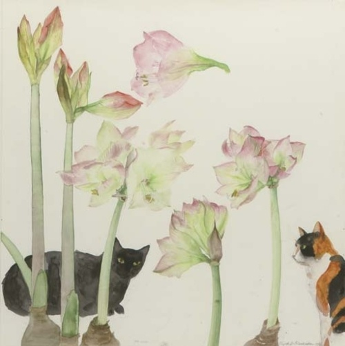 Amaryllis and Cats, Elizabeth Blackadder. English Painter, born in 1931