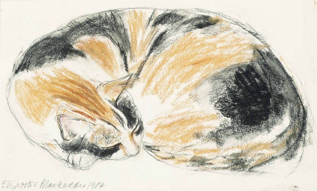 Elizabeth Blackadder, Sleeping Cat