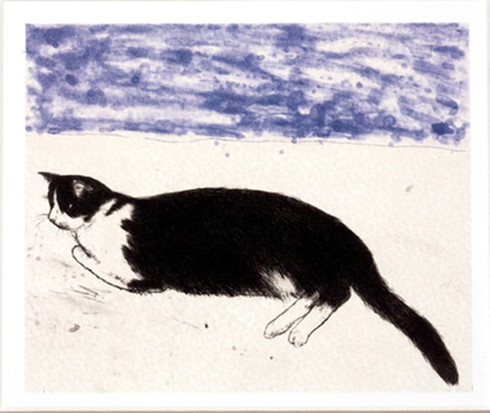 Elizabeth Blackadder (b.1931), 2003, Fred, Etching.