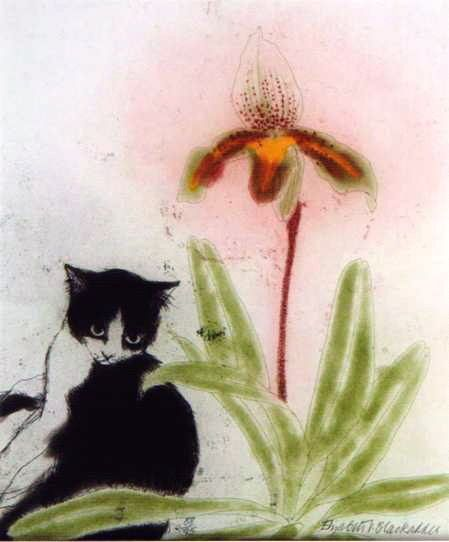 Orchid and Cat, Elizabeth Blackadder